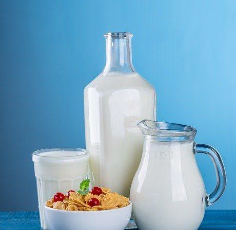 Le lait de jument : les points essentiels